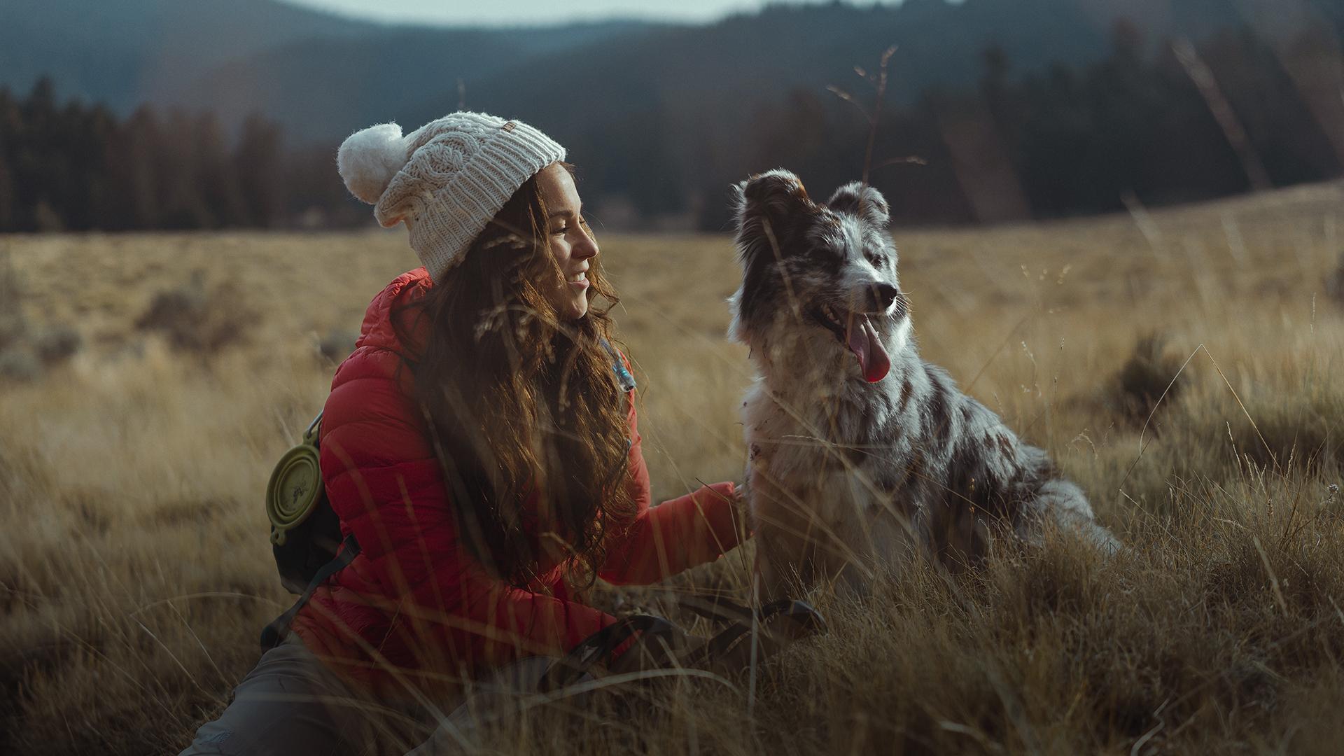 Em nome dos animais, Sara criou a primeira plataforma de viagens Pet Friendly